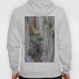 The  Swamp Fairy's Home Hoody