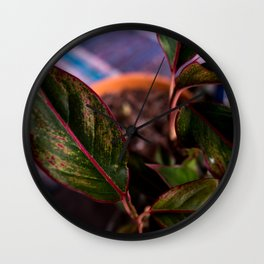 Chinese Evergreen Plant - Red and Green Wall Clock