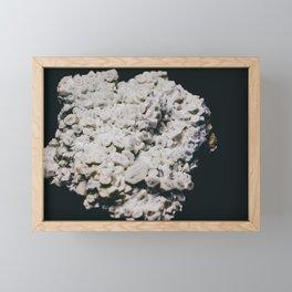 Celestine IV Framed Mini Art Print