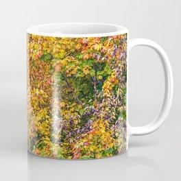 display of color Coffee Mug