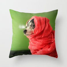 I liked them before they went mainstream Throw Pillow