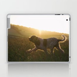 Brown Roan Italian Spinone Dog Laptop & iPad Skin