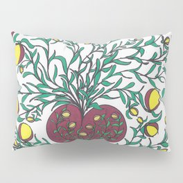The Truth of Life Pillow Sham