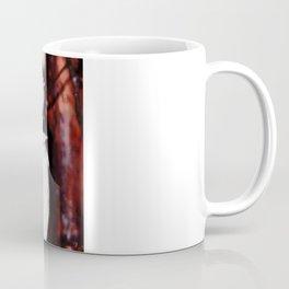 Sleeping Kookaburra Coffee Mug