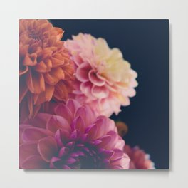 Dahlia Bunch Metal Print