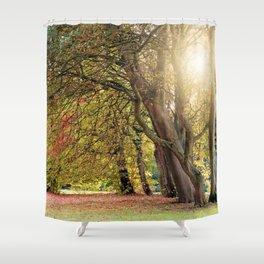 Autumn Scenery 15 Shower Curtain