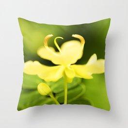 Worley's Butter Cream Senna Throw Pillow