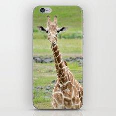 Smiling Giraffe iPhone & iPod Skin