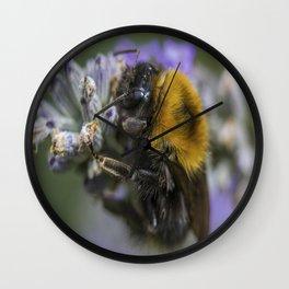 Bees Knees Wall Clock