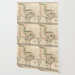 Map Of Texas 1835.Texas Map Wallpaper Society6