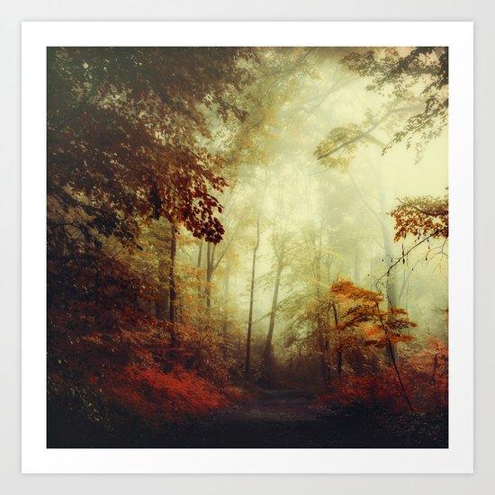 That's not my way - misty woodland Art Print