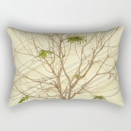 The Broad In the Afternoon Vintage Retro Photography III Rectangular Pillow