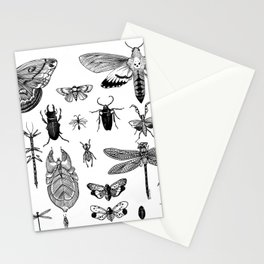 Bug Board Stationery Cards