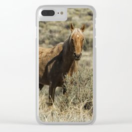 South Steens Stallion Clear iPhone Case