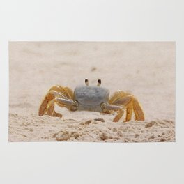 Portrait of a Ghost Crab Rug