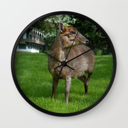 Visitor form the east Wall Clock