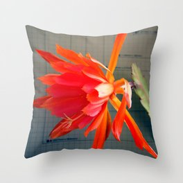 Whatta Whopper!  Throw Pillow