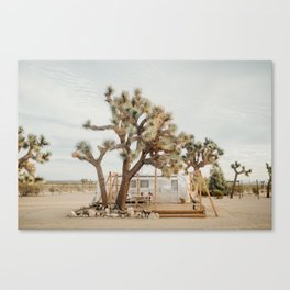 Joshua Tree National Park Canvas Print