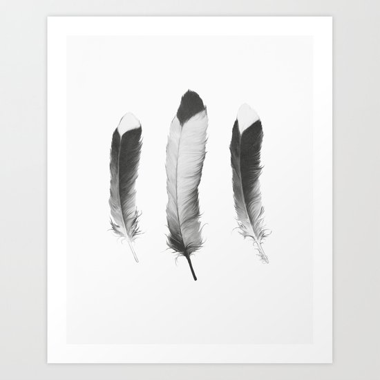 Feathers Sketch Art Print