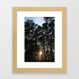 Translucent  Framed Art Print