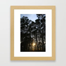 Translucent  Framed Art Print