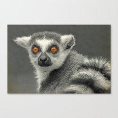 LEMUR PORTRAIT Canvas Print