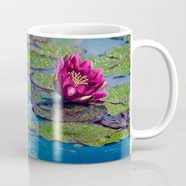 Two water lilies Coffee Mug