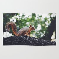 squirrel Area & Throw Rugs featuring Squirrel by Kayla Nicole