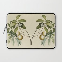 Guava Laptop Sleeve