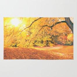 New York City Autumn Sun Rug