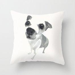 Chiwawa puppy  Throw Pillow