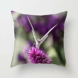 Southern White Butterfly Throw Pillow
