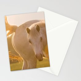 sun in horse's tail Stationery Cards