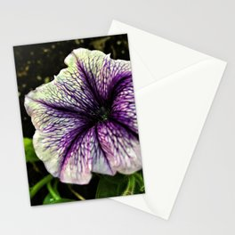 another petunia Stationery Cards