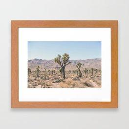 Desert Framed Art Print