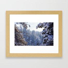 Winter Wonderland - Awbrey Meadow in Central Oregon Framed Art Print