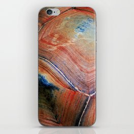 Shell Topography iPhone Skin