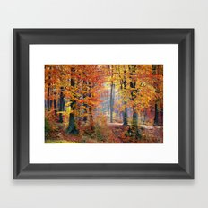 Colorful Autumn Fall Forest Framed Art Print