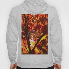Red autumn foliage in the world of a globe Hoody