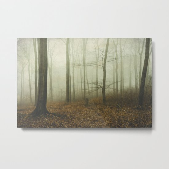 the forest i call home Metal Print