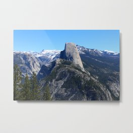 Timelessly Beautiful Metal Print