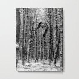 owl in the woods Metal Print