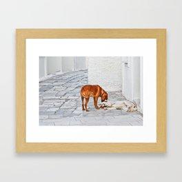 Good Morning My Dear! Framed Art Print