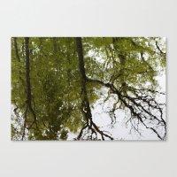 mirror Canvas Prints featuring Mirror by dominiquelandau