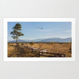 South Lake Art Print