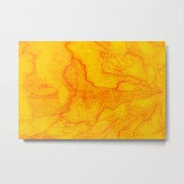 Nature map Metal Print