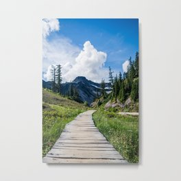 towards the mountains Metal Print