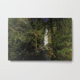 Tom's Creek Falls Metal Print