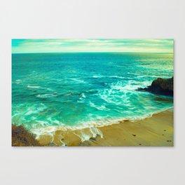 California . Canvas Print
