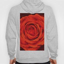 Vintage Rose,red Hoody